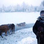 coldest-village-oymyakon-russia-amos-chaple-8
