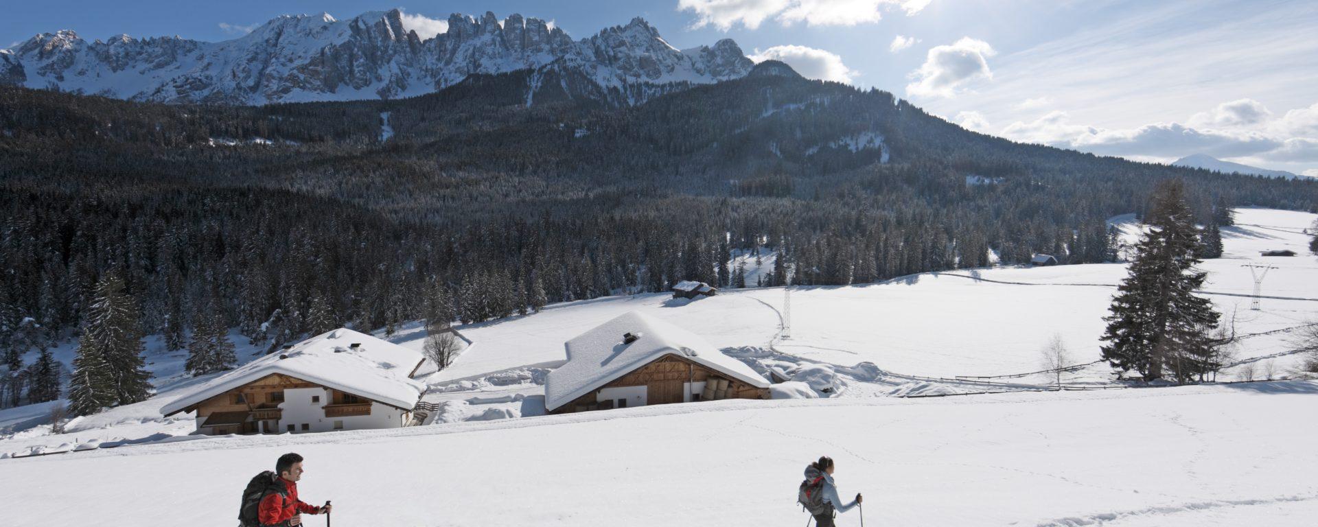 Suedtirol, Roter Hahn, Karerhof, Ferien auf dem Bauernhof, Winter