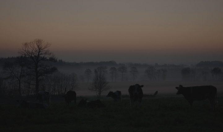 Bretange-boeren